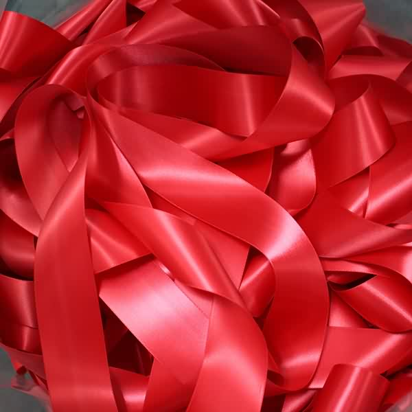Satin ribbons / Label ribbons daea li