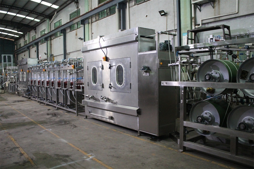 Manufacturer of New Flexo Printing Machine -